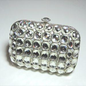 Shelly Silver Crystal Hardshell Clutch